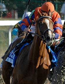 Breeders' Cup Focus: A to the Croft