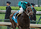 Washington-Bred Atta Boy Roy Scores CD Stakes