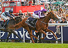 Deep Field Awaits Australia at Leopardstown