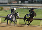 Kentucky Derby News Minute - 4/28/2013
