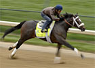 Kentucky Derby 2013: Gary Stevens - Oxbow