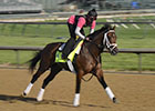 Kentucky Derby News Minute - 4/30/2013