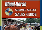 Summer Select Sales Guide
