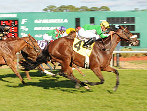 Ballymore Lady Wins Thrilling Endeavour