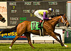 Battle of Hastings Tops Colonial Turf Cup