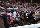 Numbers a Mixed Bag for Breeders' Cup 2014