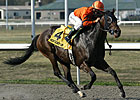 Bear Now Cruises in Ky. Cup Distaff