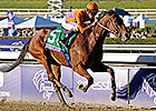 Beholder Trumps Delta, Princess in Distaff