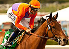 Champion Beholder Tops 134 Ashland Nominees