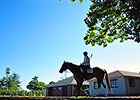 Great Weather, Crowd Expected for Belmont