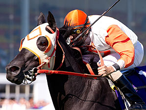 Ben's Cat '50-50' to Make BC Turf Sprint
