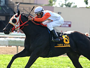 Ben's Cat Back to Winning Ways in Parx Dash