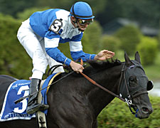 Better Talk Now Likely to Miss Joe Hirsch Turf Classic