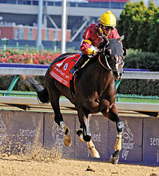 Big Drama Begins 5YO Season in Mr. Prospector