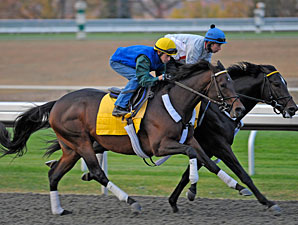 Apart May Return to Churchill in Clark