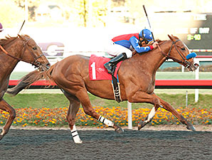 Hollendorfer has Solid Pair for San Pasqual