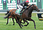 Boisterous Seeks Return to Winning Ways