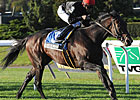 Boisterous in Good Spot for Monmouth Stakes