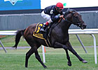 Boisterous Makes Breakthrough in Man o' War