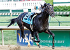 Aristides: Bold Start Gets His Graded Stakes