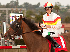 Drysdale Duo Works for Hollywood Turf Cup