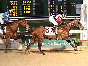 Bradester Digs Deep for First Stakes Tally