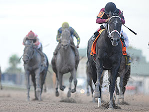 Florida Derby is Crunch Time for Cairo Prince