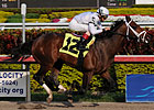 Cal Nation Returns in Gulfstream Allowance
