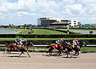 Gulfstream at Calder Meet to Offer 23 Stakes