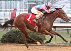 Caleb's Posse Rounds Up Smarty Jones Stakes