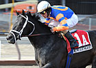 Pletcher Holds Cards in Fall Highweight
