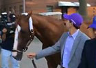 California Chrome Returns to Barn