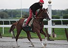 11 Could Challenge Chrome's Triple Crown Bid