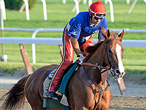 Belmont Preview: Looking for The One