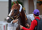 Kentucky Derby: California Chrome
