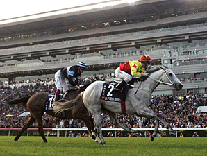 Second Straight HK Cup for California Memory