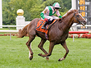 Quality Over Quantity in Turf Classic