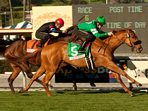 Caracortado Shows His Turf Chops in Millions