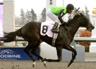 Stakes Winner Cascading Retired