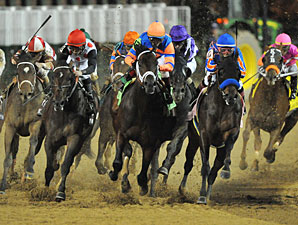 Trainers of Classic Horses Report No Problems