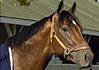 Closing Argument 's Fee $5,000 at Millennium