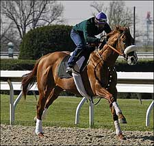 O'Neill Breezes Two Over Fast Keeneland Polytrack