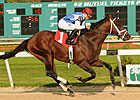 Colizeo Wins Challenger; Drosselmeyer 4th
