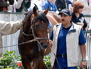 Pletcher Likes Big Brown, Colonel John