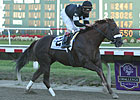 Commentator Possible for Clark Handicap