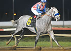 Six Graded Stakes Winners Eye WV Derby