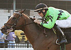 Country Day Retired to Stand at Crestwood