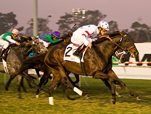 Court Vision Rules in Hollywood Derby