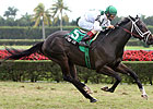 'Cowboy' Back to Turf for Pletcher