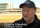 Cox Plate: Wayne Hawkes - All Too Hard